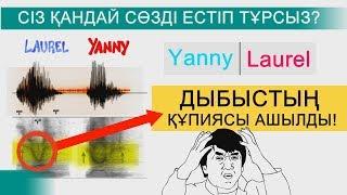Yanny немесе Laurel ДЫБЫСТЫҢ ҚҰПИЯСЫ АШЫЛДЫ