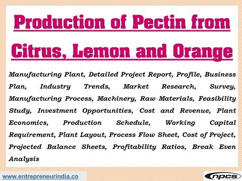 Production of Pectin from Citrus, Lemon and Orange