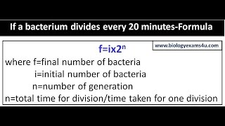 If a bacterium divides every 20 minutes-Formula