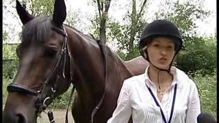 25.07.11 В Красноармейске развивается конный спорт