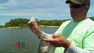 Tips on Fishing Hair Jigs for Bass