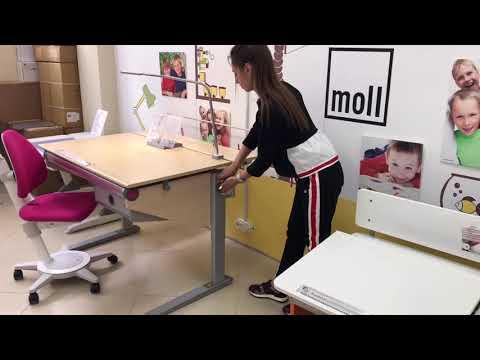 Детская парта-стол Moll Winner