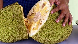 How to Cut Jackfruit - Fresh Jackfruit Cutting and Eating - OPENING JACKFRUIT