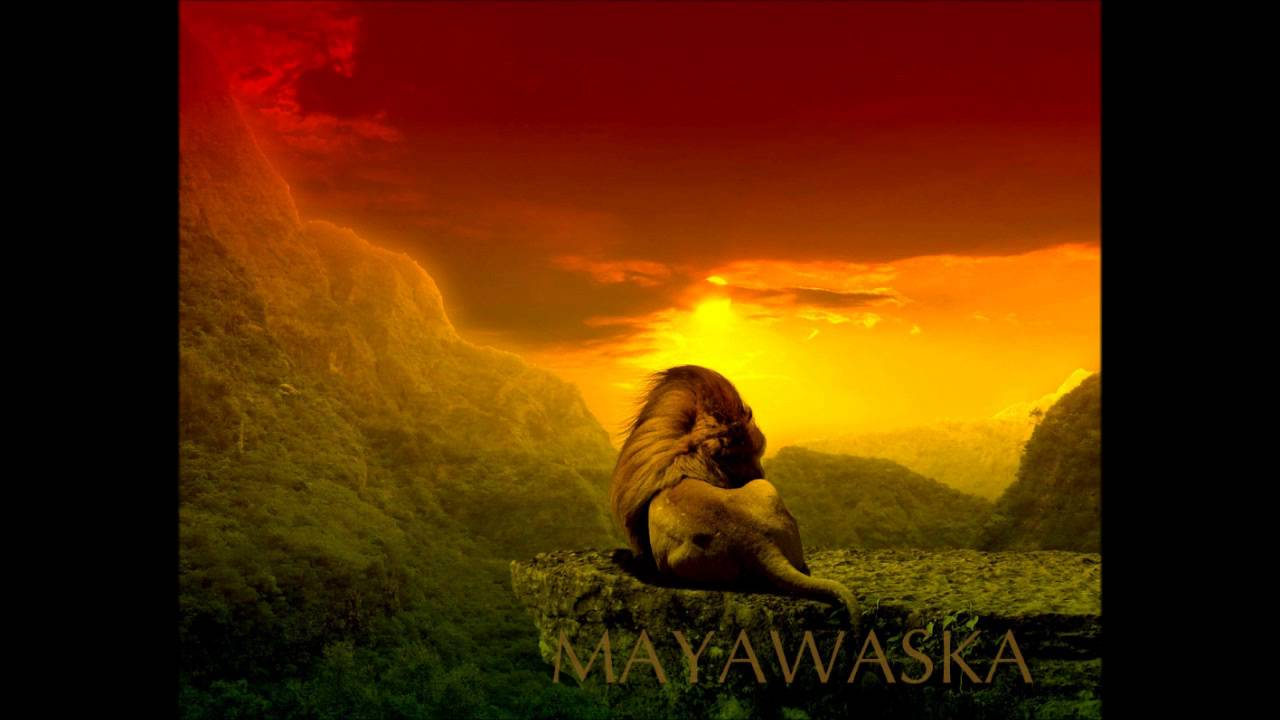 video da rai replay con safari