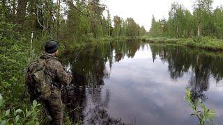 Рибалка в глухій тайзі на тайговій річці / ЩУКА АТАКУЄ  TAIGA ADVENTURE
