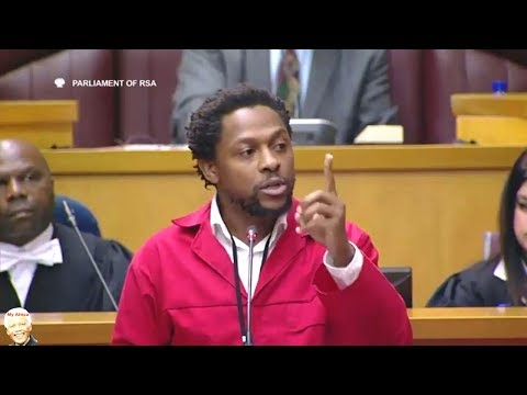 Dr Ndlozi In Action Parliament SSA Debate