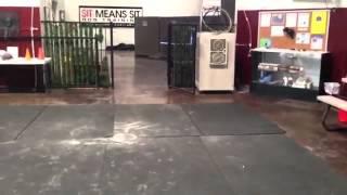 Puppy Retriever Training - Using Boundaries