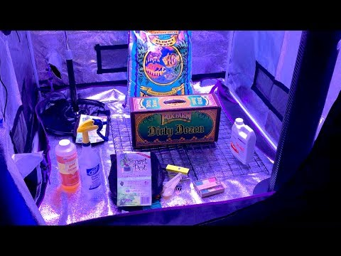 Small Cannabis Grow Room Setup:  Supplies Needed And More