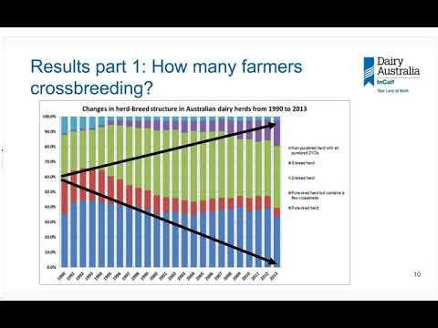 InCalf Farmer Webinar 07: Crossbreeding in Australian dairy herds