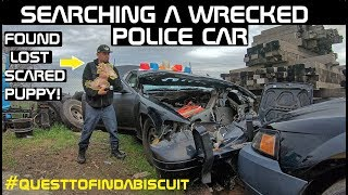 Searching a Wrecked Police Car found a Lost Scared Puppy! Crown Rick Auto