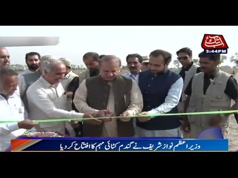 Shergarh: PM Nawaz Sharif inaugurates Wheat harvesting campaign