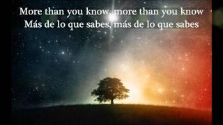 Eddie Vedder - More Than you Know (Lyrics)