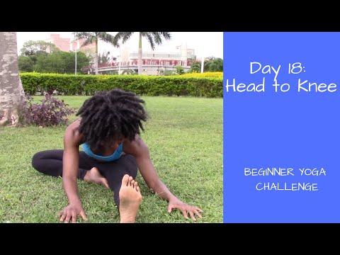 How to Head-to-Knee Pose (Janu Sirsasana)   Beginner Yoga Challenge Day 18