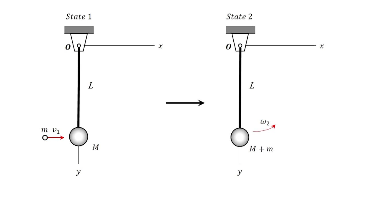 ballistic pendulum lab The ballistic pendulum (fig 1) consists of a removable arm (a) pivoted at point o a spring gun (g) fires a ball (of mass m) into the cage (c) at the lower end of the arm.