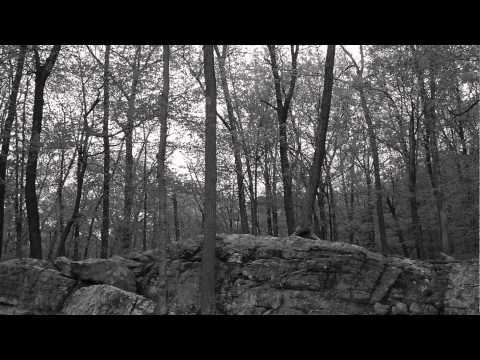 nature/landscape-photography-(black-&-white)