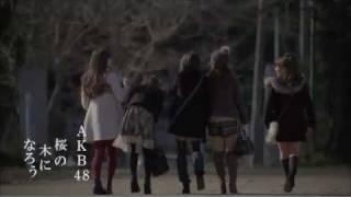 【MV full】 桜の木になろう / AKB48 [公式] AKB48 検索動画 38