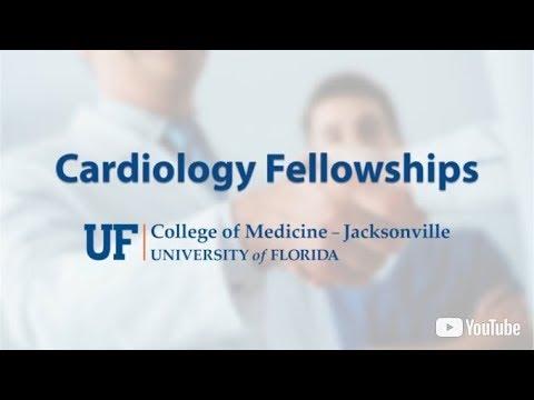 Dominick J  Angiolillo, M D , Ph D , FACC | Cardiovascular