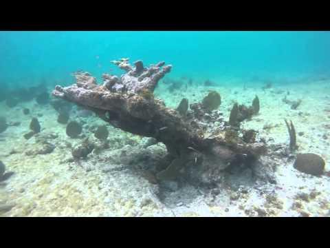 GoPro Spring Break Grand Cayman