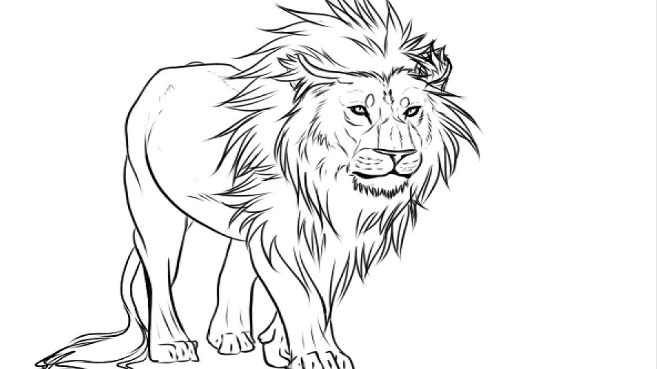 Coloring PagesEasy Kids Drawing Lion Drawing Pictures