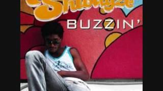 Shwayze- Buzzin