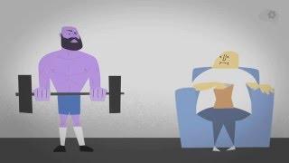 Как растут мышцы(Оригинал здесь: https://www.youtube.com/watch?v=2tM1LFFxeKg&list=PLJicmE8fK0EiEzttYMD1zYkT-SmNf323z&index=159 Больше интересной ..., 2015-12-25T21:55:17.000Z)