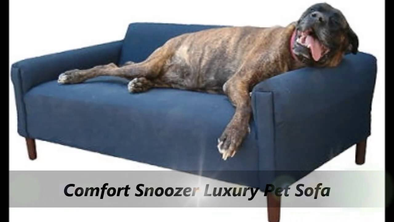 Snoozer Luxury Dog Sofa Beds