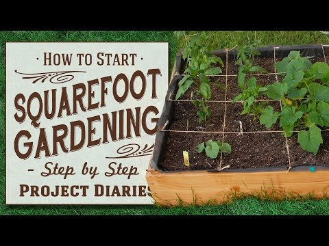 ★ How to: Start Square Foot Gardening (A Complete Step by Step Guide)