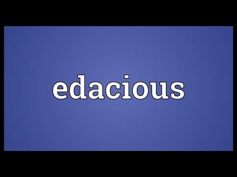 Header of edacious