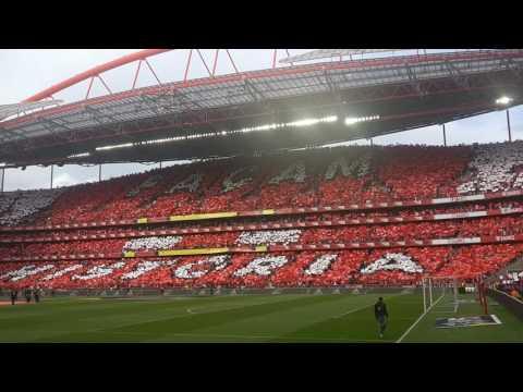Benfica Tetracampeão Hino Estádio da Luz