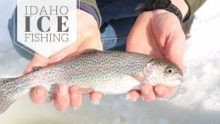 Idaho Ice Fishing at Moose Creek Reservoir