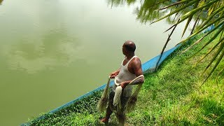 Net Fishing | Catching Fish By Cast Net | Net Fishing in the village (Part-57)