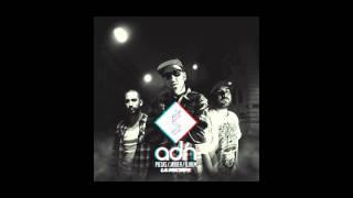 Piezas, Jayder y Dj Hem - 03. Blanco y negro (con Soriano) (Baghira Remix) ADN LA MIXTAPE 2012