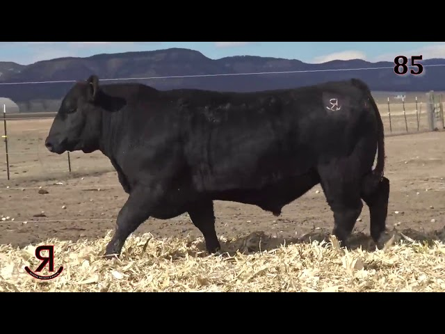 Reverse Rocking R Ranch Lot 85