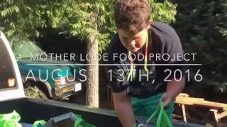 Motherlode Food Project -Aug 2016