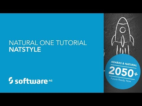 Natural ONE Tutorial - NatStyle