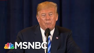 President Donald Trump's Bizarre Obsession With Birds   All In   MSNBC