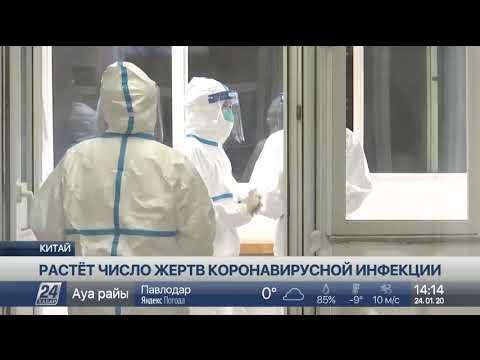 Число больных новой коронавирусной инфекцией достигло 830