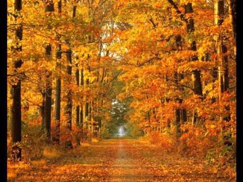 Nicol Williamson band plays Autumn Leaves