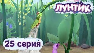 видео Клей