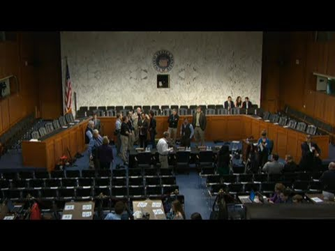 Senate hearing on gun violence