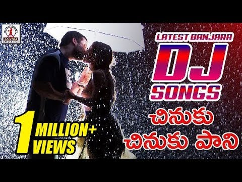 Latest Banjara DJ Songs | Chinuku Chinuku Pani DJ Song | Lalitha Audios And Videos