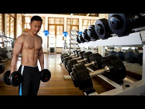 Lesson 4 | Rear Delt | Shoulder Workout Beginner | Gym Exercise , Fitness Tips Tutorials