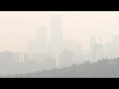 Alberta 'the exhaust pipe of North America': Dave Philips   Wildfire smoke choking Edmonton, Calgary