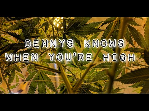 Producer Dennys Knows When You're High 8-13-21