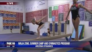Arizona Dynamics
