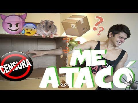 QUE HAY EN LA CAJA? | GONZA GRAVANO