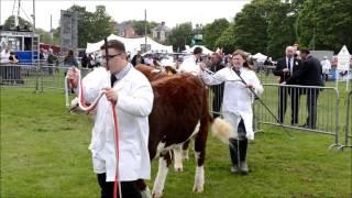 Shropshire County Show 2015