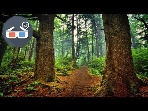 3D Most Wunderful Nature 3D Anaglyph Video 3D RED CYAN HD 1080p
