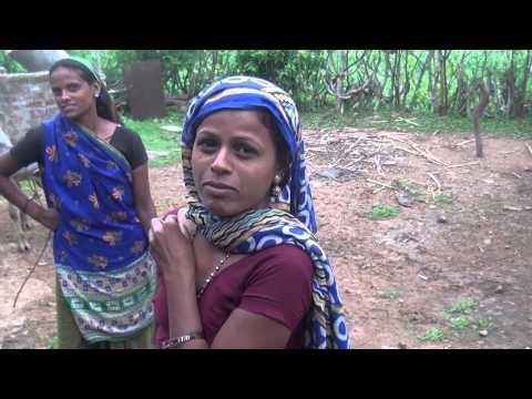 Moti Zari  (Gujarat - India)