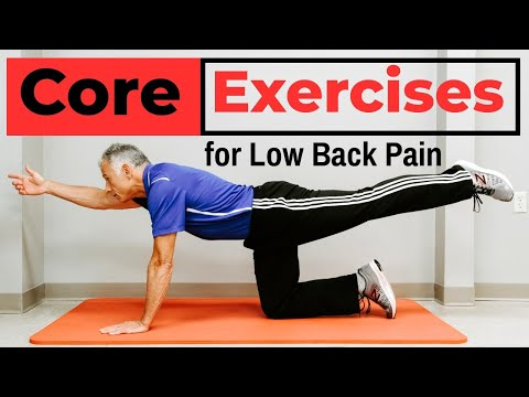 7 Simple Core Exercises That PREVENT Low Back Pain